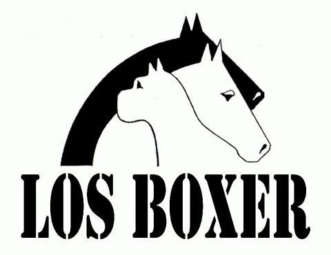 Imagen de CLUB HÍPICO LOS BOXER
